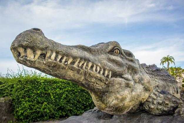Crocodile et le ciel.