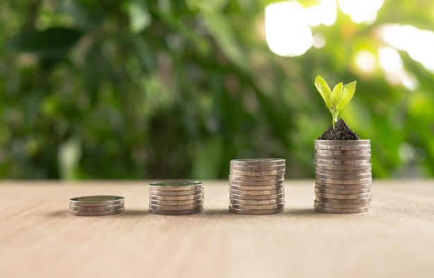 Croissance de l'argent économiser de l'argent. pièces d'arbre supérieur pour montrer le concept de croissance des affaires