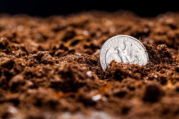 Croissance des pièces en euros. faible profondeur de champ.