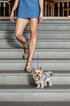 Crop femelle avec chien dans les escaliers