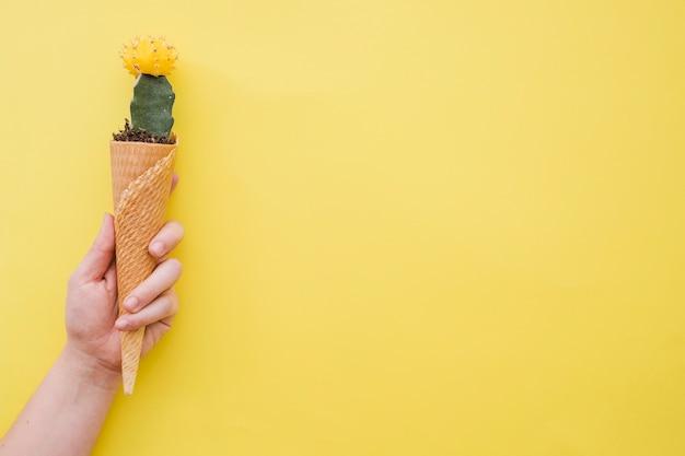 Crop main tenant cône avec cactus