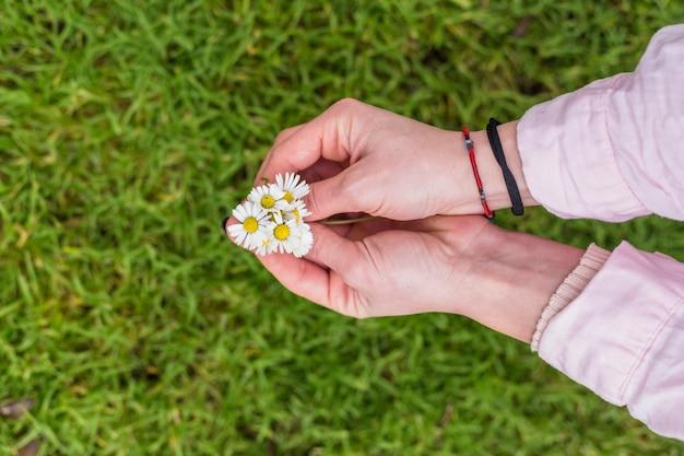 Crop mains féminines avec marguerites colorées
