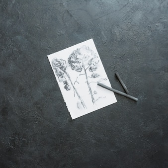 Croquis de bel arbre sur papier blanc avec un bâton de charbon de bois sur fond noir ardoise
