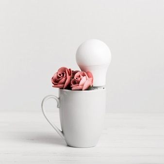 Cub avec de belles roses et une ampoule