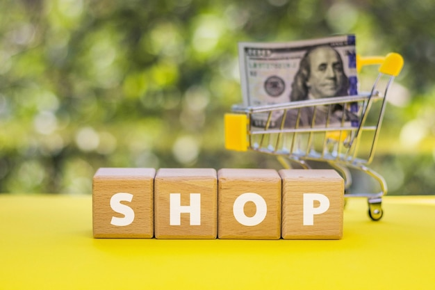 Cubes en bois avec texte shop et mini caddie avec 100 dollars. affaires, finances, boutique en ligne, concept d'économie d'argent. monnaie américaine.
