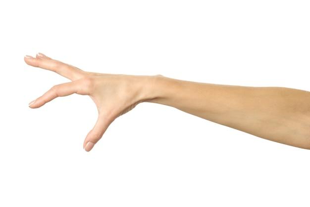 Cueillette à la main, tenant, saisissant ou atteignant isolé sur blanc