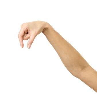 Cueillette à la main, tenir, saisir ou tendre la main. main de femme avec manucure française faisant des gestes isolé sur mur blanc. partie de série