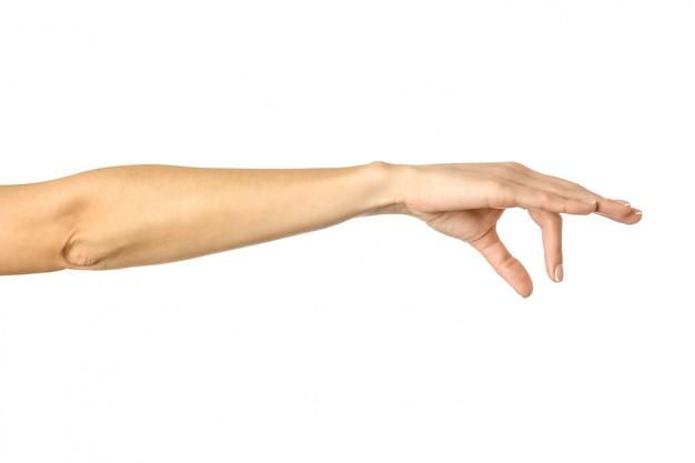 Cueillir, tenir, saisir ou atteindre à la main. main de femme gesticulant isolé sur blanc