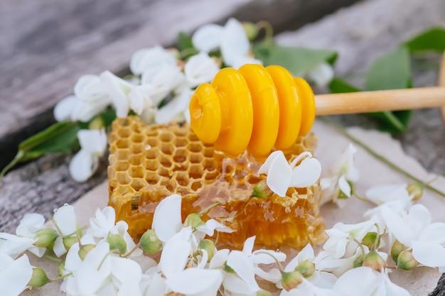 Cuillère en bois pour miel sur morceau de nid d'abeille de robinia pseudoacacia.