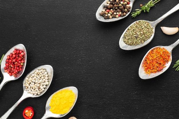 Cuillères alignées de condiments en poudre