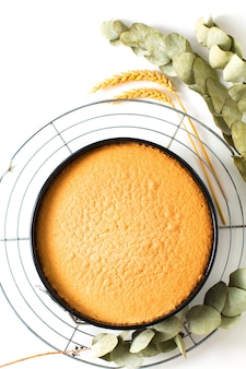 Cuisson du concept de nourriture fraîchement cuit au four génoise dans un moule à gâteau