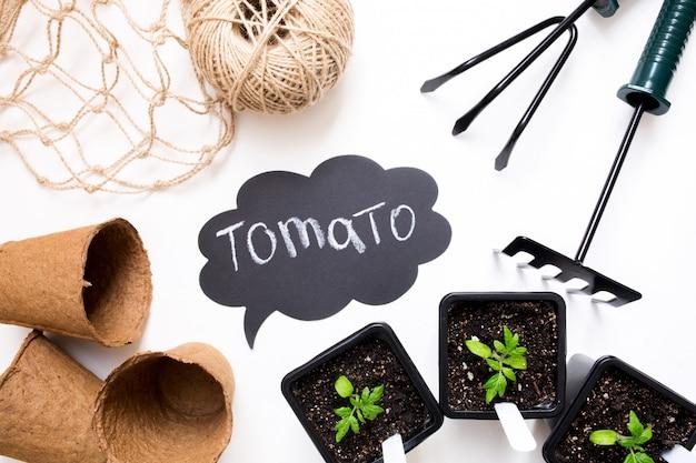 Cultiver des légumes. saison de printemps. outils de jardin et pots pour les plantes.