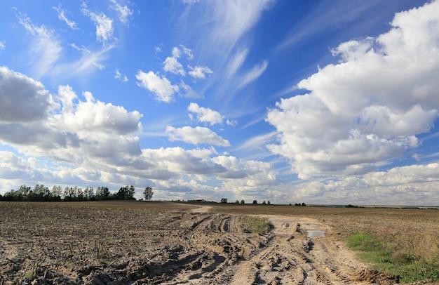Cumulus et cirrus sur un chemin de terre dans un champ