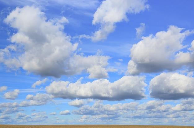 Cumulus dans le ciel bleu sur champ jaune