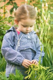 Curieuse petite fille de trois ans touchant les plantes de jardin en plein air à la verticale