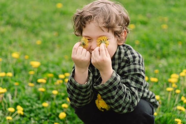 Curly boy recueille et renifle les fleurs de pissenlit