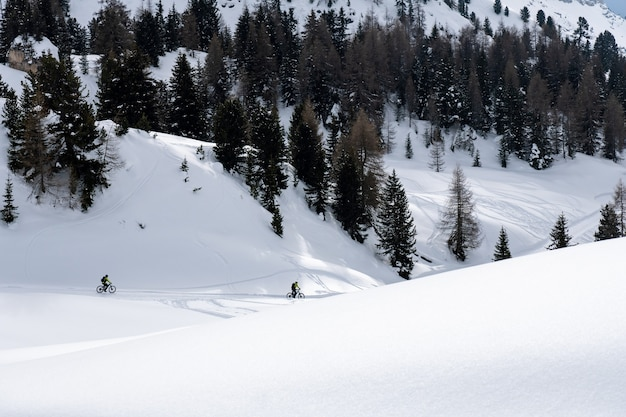 Cyclistes entièrement équipés faisant du vélo dans des montagnes pittoresques; un terrain boisé recouvert de neige