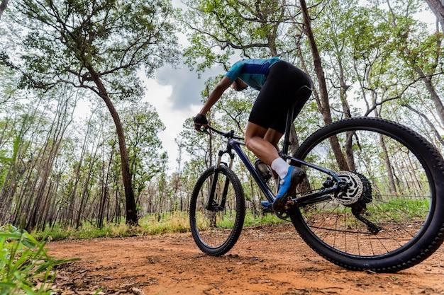 Les cyclistes de vélo de montagne de formation dans la forêt