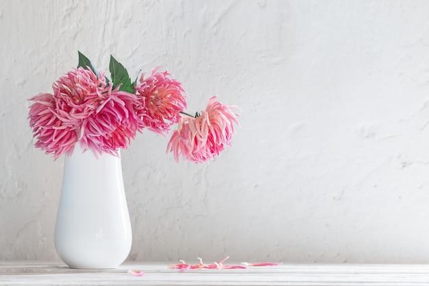 Dahlias roses dans un vase blanc sur fond de mur blanc