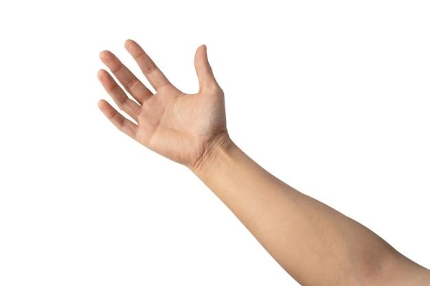 Dame asiatique femme belle main vide isolée sur fond blanc avec un tracé de détourage.