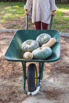 Dame avec des légumes frais dans un chariot