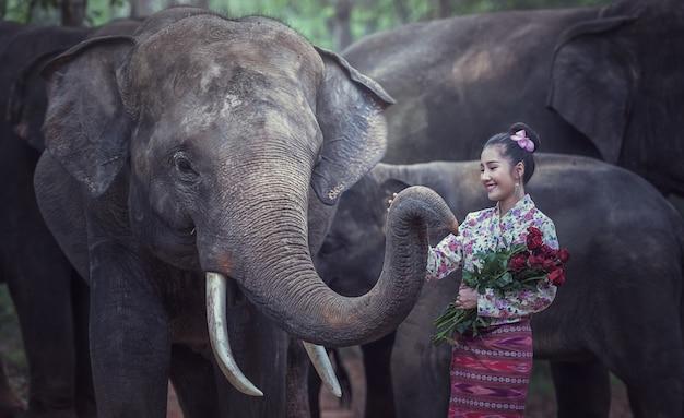 Dame à la mode traditionnelle thaïlandaise avec éléphant