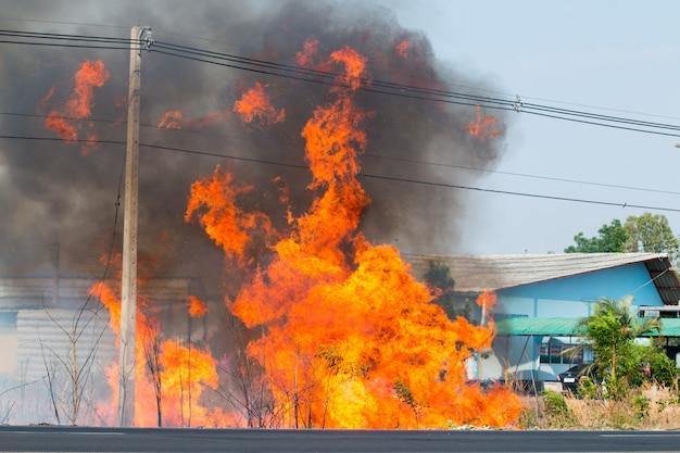 Danger d'incendie, arbres en bordure de route, fils électriques, nombreuses fumées noires flottant dans le ciel