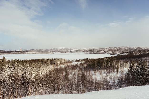 Dans le grand nord froid, la forêt et les champs sont recouverts de neige blanche, la nature hivernale