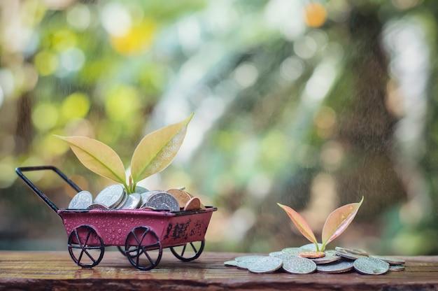 Dans le jour de pluie, plante grandissant en épargnant des pièces dans la brouette