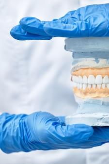 Dans les mains tient une mâchoire d'entraînement artificielle il montre comment se brosser les dents