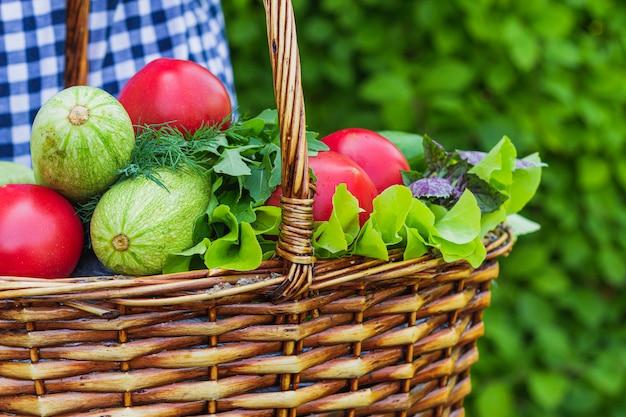 Dans un panier en osier se trouvent des tomates, des courgettes, de la laitue, du basilic, du concombre et de l'aneth