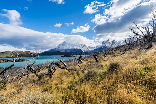 Dans le parc national de torres del paine, en patagonie, au chili, au lago del pehoe.