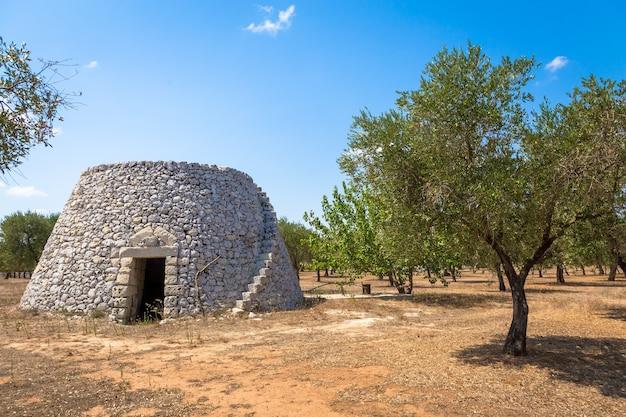 Dans la région du salento, au sud de l'italie, un entrepôt rural traditionnel nommé furnieddhu en dialecte local. c'est un bâtiment traditionnel en pierre dans la zone agricole des olives.