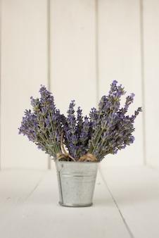 Dans un seau en fer se trouvent trois bouquets de lavande d'olive fraîche sur blanc.