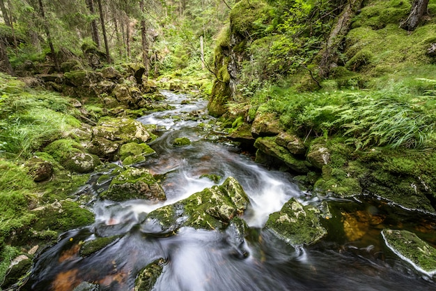 Débit d'eau dans un ruisseau, longue exposition