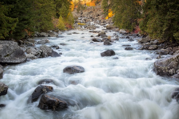 Débit de la rivière à travers le temps de chaging