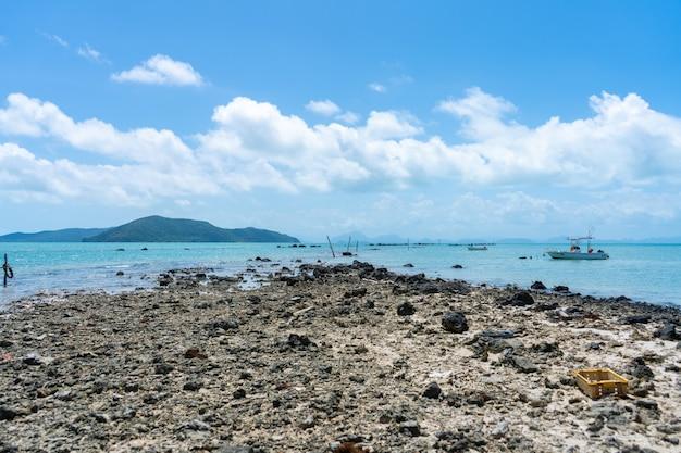 Débris de corail sur la plage près de l'eau. plage de corail.