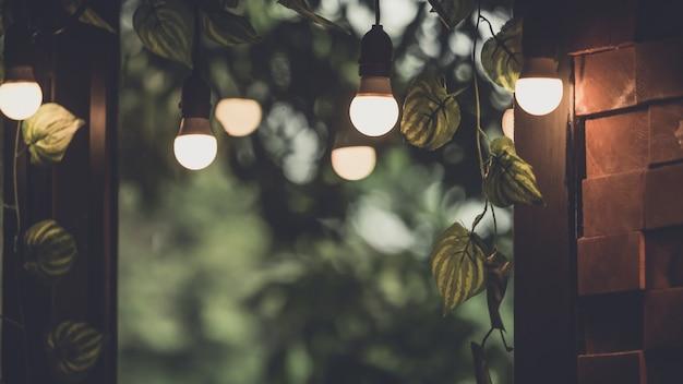 Décor d'ampoule sur la fenêtre