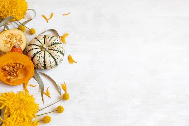 Décor d'automne festif de citrouilles et de fleurs sur fond blanc. concept de jour de thanksgiving ou d'halloween. composition d'automne à plat avec espace de copie.
