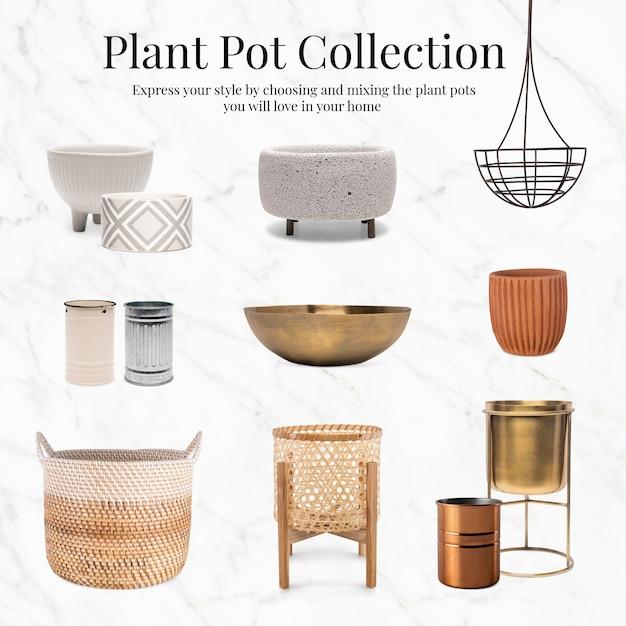 Décor à la maison de collection de pots de plantes
