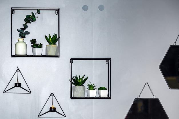 Décor à la maison avec diverses plantes sur les radeaux