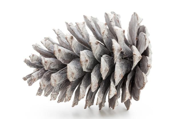 Décor de noël, pomme de pin sur surface blanche
