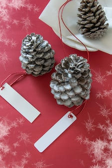 Décoration d'hiver deux pommes de pin avec des étiquettes sur fond rouge enneigé