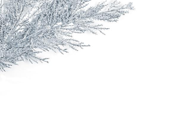 Décoration de noël en argent. branche d'arbre dans un coin. élément décoratif de noël, nouvel an