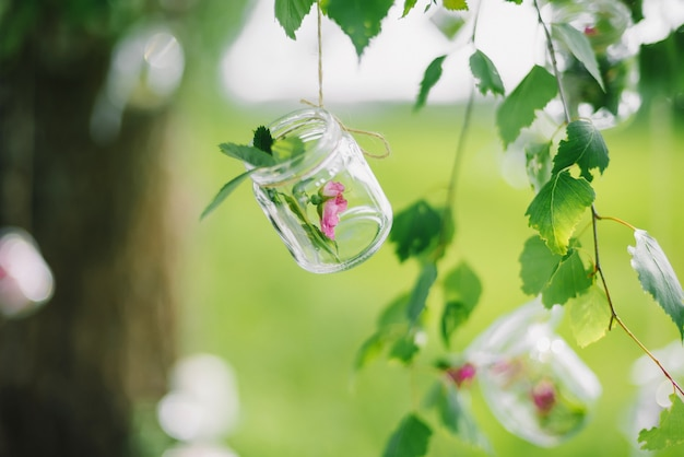 Décoration en pot avec fleur accrochée sur un arbre agrandi