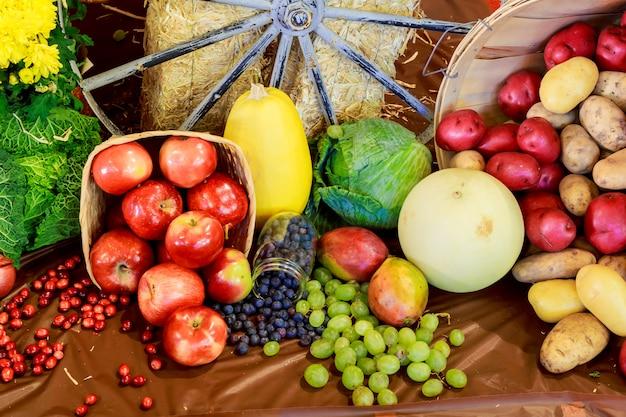 Décoration de la récolte d'automne nature pour le jour de thanksgiving