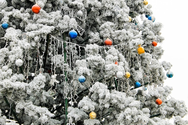 Décorations de noël sur l'arbre de noël recouvert de givre