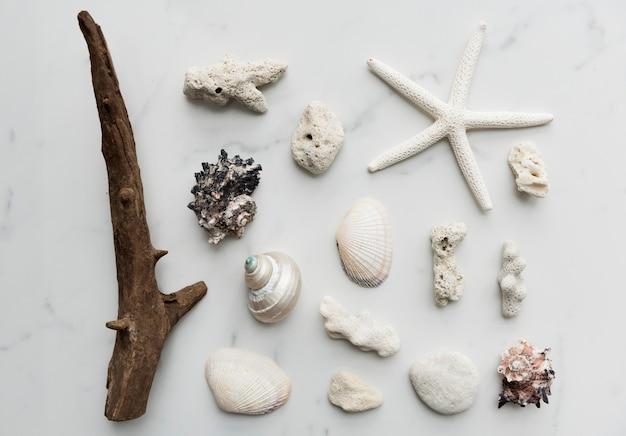 Décorations sur le thème de la plage