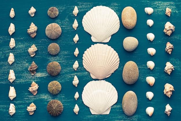 Définir la place du cadre décoratif coquille de mer pour le texte.