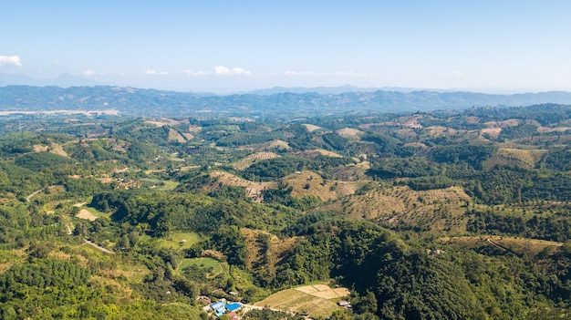 Déforestation et aménagement du territoire dans les hautes terres de la province de nan en thaïlande, concept de forêt environnementale et de conservation